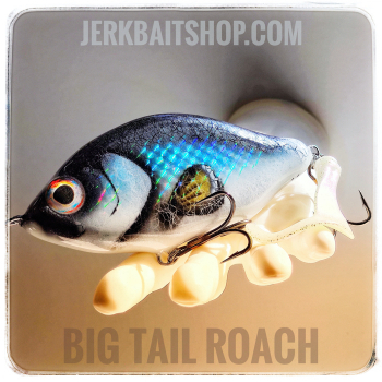 Jerkbait Big Tail Roach CL02